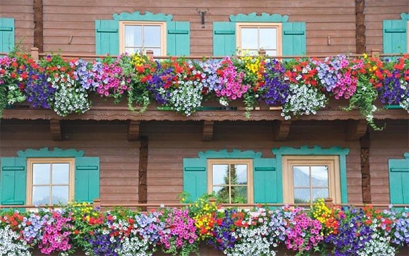 dịch vụ chống thấm bồn hoa